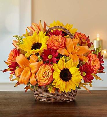 "Fields of Europeâ""¢ for Fall Basket"