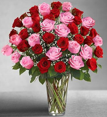 Unltimate Elegance Four DZ Long Stem Red and Pink Roses