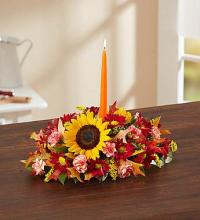 Fields of Europe- for Fall Centerpiece