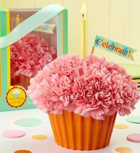 Cupcake in Bloom Pink