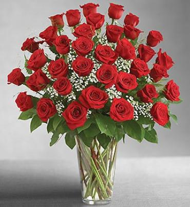 Ultimate Elegance Premium 36 Long Stem Red Roses